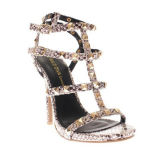 Le talon haut neuf de modèle attache Madame Dress Sandals (S09)