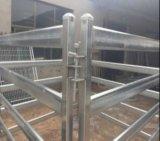панель рельса овала 80X40mm сваренная и Hot-DIP Gal лошади/панель Corral скотин