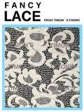 Tissu en nylon de lacet de jacquard (QH063)