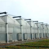 Estufas da Multi-Extensão do ziguezague de China com sistema de ventilação