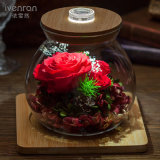 Fiori freschi della bottiglia luminosa di desiderio di Ivenran per il regalo creativo della decorazione di festa