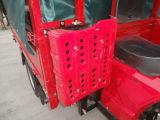 Abrir el tipo triciclo de la placa de Flate de la carrocería