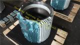 모래 무쇠 엔진 부품은 SGS 3gzf114028-2에 의하여 증명했다