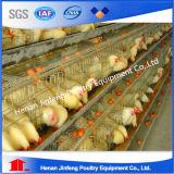 Sistema automatico della gabbia del pollo di alta qualità da Jinfeng