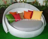 Rattan di alluminio Sunbed della mobilia del patio