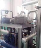Pomp van de Schroef van de halfgeleider de Zonne Industriële Gebruikte Vacuüm Droge (RSE80)
