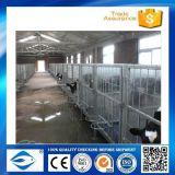 Frontière de sécurité bon marché de bétail de vente directe d'usine