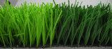 [50مّ] [هيغقوليتي] كرة قدم عشب اصطناعيّة ([ي50-ب])