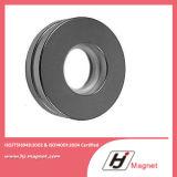 Forte magnete permanente del neodimio dell'anello di N35 N38 N42 con il campione libero