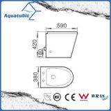 Muur Gehangen Washdown Dubbel Toilet (ACT5262B)
