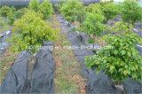 雑草防除の景色によって編まれるファブリック