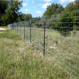 Square Galvanized Steel Farm Designs Fence Posts