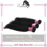 ブラジルのバージンの毛はブラジルの巻き毛のバージンの毛を編む