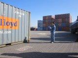 中国の専門のLoading SupervisionかYour GoodsのためのQuality Control