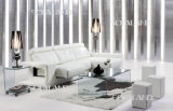 Facendo scorrere il sofà di cuoio della mobilia (572)