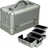 Heißer Verkaufs-PROkosmetischer Verfassungs-Eitelkeits-Kasten-Aluminiumkasten