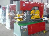 Trabalhador hidráulico do ferro para a estaca do ângulo