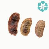 Estratto/Sennoside di Angustifolia dell'estratto/cassia del foglio della senna