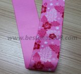 Usine Highquality Printing Webbing pour Garment #1312-3