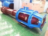Vertikale Turbine-Pumpe