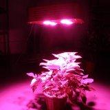 A ESPIGA cheia do poder superior 300W do espetro cresce a iluminação do diodo emissor de luz da lâmpada para estufas