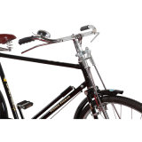 Велосипед горячего человека Bike сбывания традиционного сверхмощный (FP-TRD-S02)