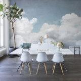 Crear la impresión hermosa de los murales fotográficos para requisitos particulares del papel pintado de la alta calidad