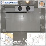 Congelador de ráfaga de la cámara fría de Shinyer para mantener el alimento fresco