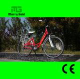 아름다운 모형 250W 허브 모터 En 15194 전기 자전거