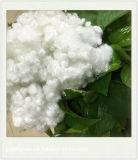 Polyeaster Satple fibra (silicio Hollow)
