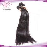 8Aマレーシアの毛の女性のまっすぐな人間の毛髪の織り方