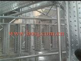 La bonne qualité de prix concurrentiel a galvanisé le roulis en acier de matériaux de construction d'échafaudage de Decking formant la machine