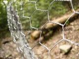 Sailin sumergió el alambre para la red de las aves de corral