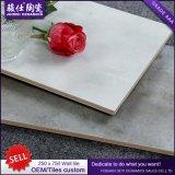 Foshan 250&times de vente chaud ; Tuile en céramique de mur de tuile de Pocerlain de 750 intérieurs
