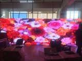 Visualización de pantalla a todo color de interior del módulo de P3 192mm*192m m