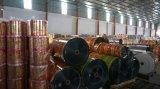 Film de roulis stratifié par impression d'empaquetage en plastique de papier d'aluminium de conditionnement des aliments de Danqing Y1720