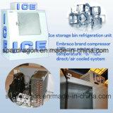 De Bak van de Opslag van het ijs voor het In zakken gedane Opslaan van het Ijs (binnen & openluchtgebruik)