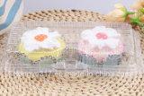 Transparentes descartáveis Dois-Embalam a caixa da bolha do bolo