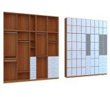 経済的な縦の木製のシンプルな設計の穀物によって蝶番を付けられるワードローブ