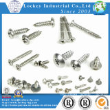 Aço inoxidável Self Tapping Screw Deck Screw
