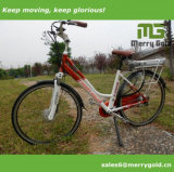 Bicicleta eléctrica Green Power City para adultos