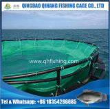 [أقوكلتثر] سمكة شبكة قفص لأنّ سمكة يزرع إستعمال