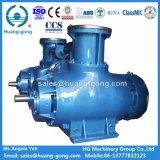 Huanggong 바다 사용을%s 두 배 나선식 펌프 2hm9800-100