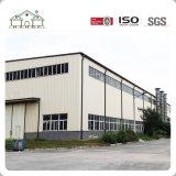 Surtidor profesional del almacén de acero del edificio