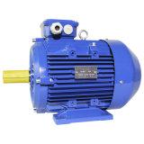 Ie3 Ye3の優れた効率三相非同期AC電気モーター鋳鉄フレーム