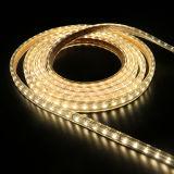 광고 방송을%s 온난한 백색 5W 12V LED 지구 빛
