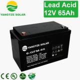 Bateria de envio livre de Yuasa 12V 65ah