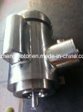 Мотор индукции NEMA стандартный