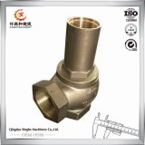 La pompe de bâti de pièce de pompe d'OIN partie le bâti d'alliage de cuivre