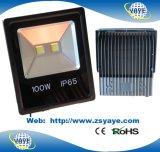 Ce/RoHSのYaye 18最も新しいデザイン上販売法100With60W屋外LED洪水ライト及び100With60W屋外LED Tunnellightの